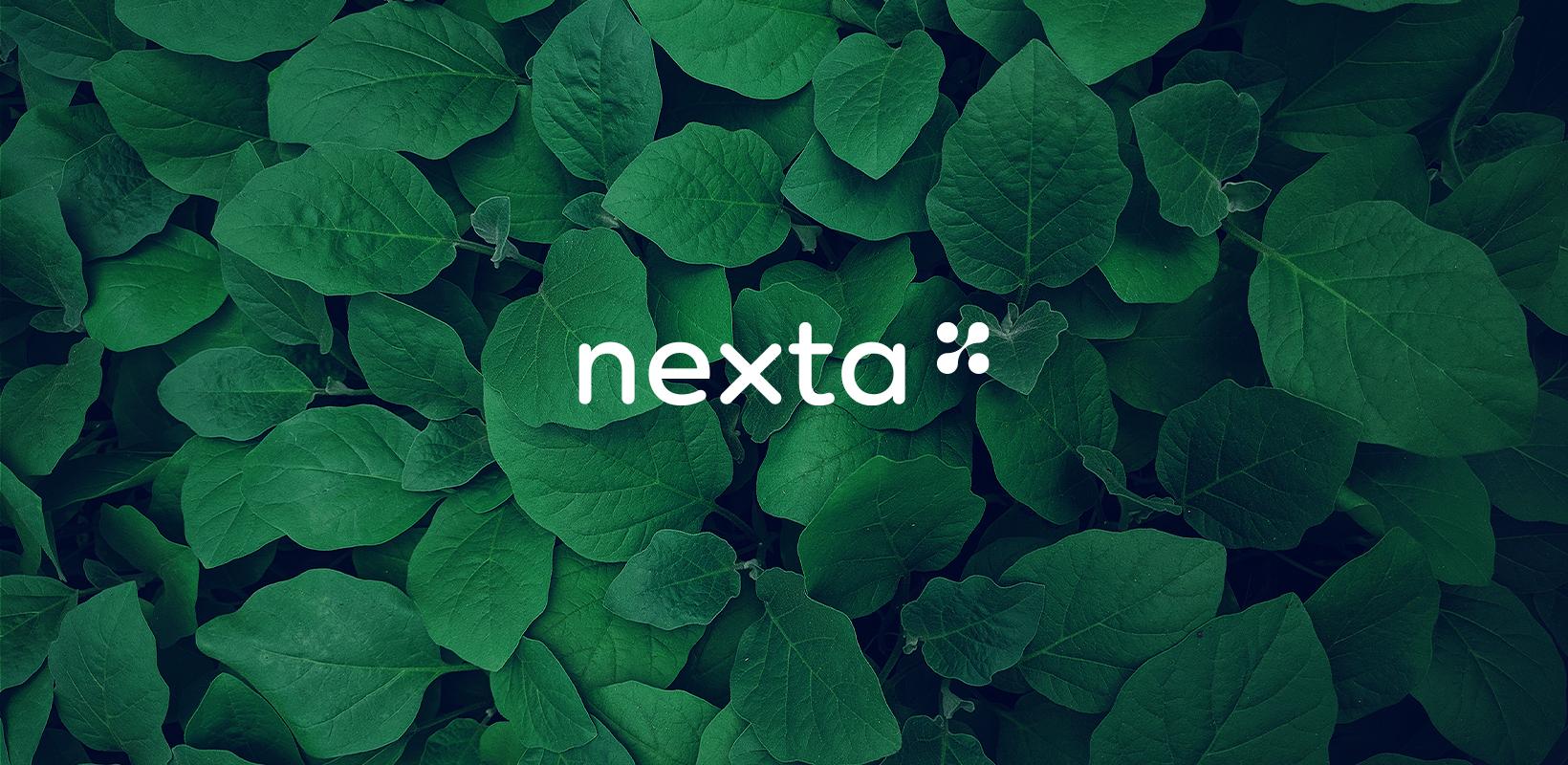 Nexta-Behance_02